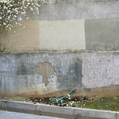 Borrar-graffiti_min